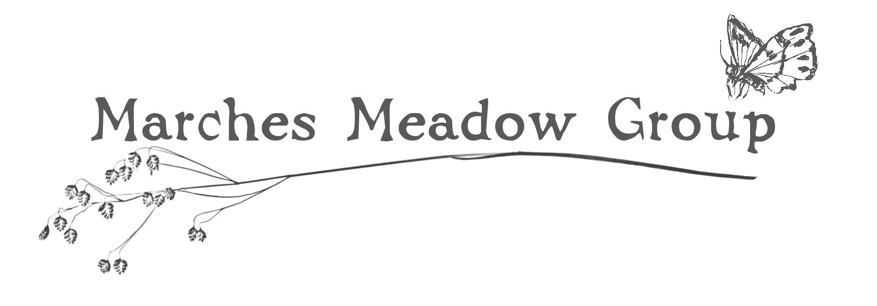 march-meadows-custom-header-logo